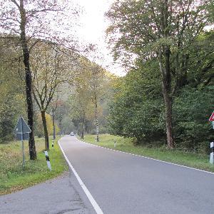 versteckter, kuscheliger Waldparkplatz