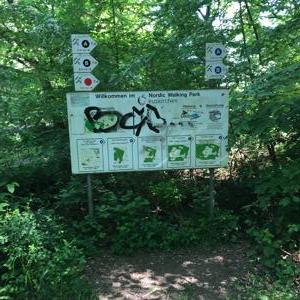 Waldparkplatz Billig