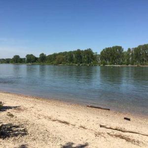 Worms Rheinufer 2