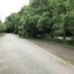 Lingen Hohenfeldstraße