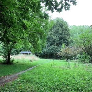 Waldparkplatz Diez